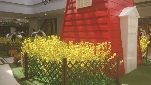 宝丽春暖花开